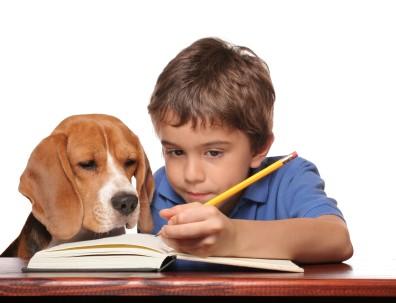 Hábito de estudio en Educación Primaria (1)